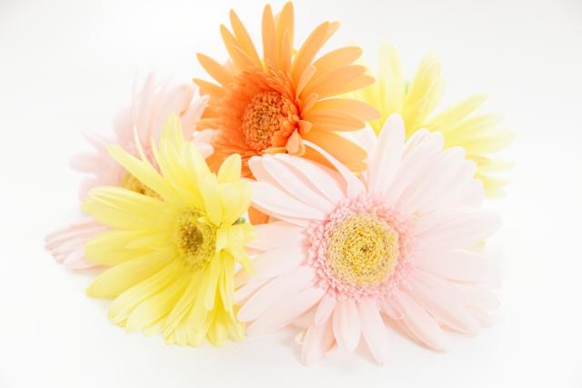 ユリ、ガーベラなどのプリザーブドフラワーの花束